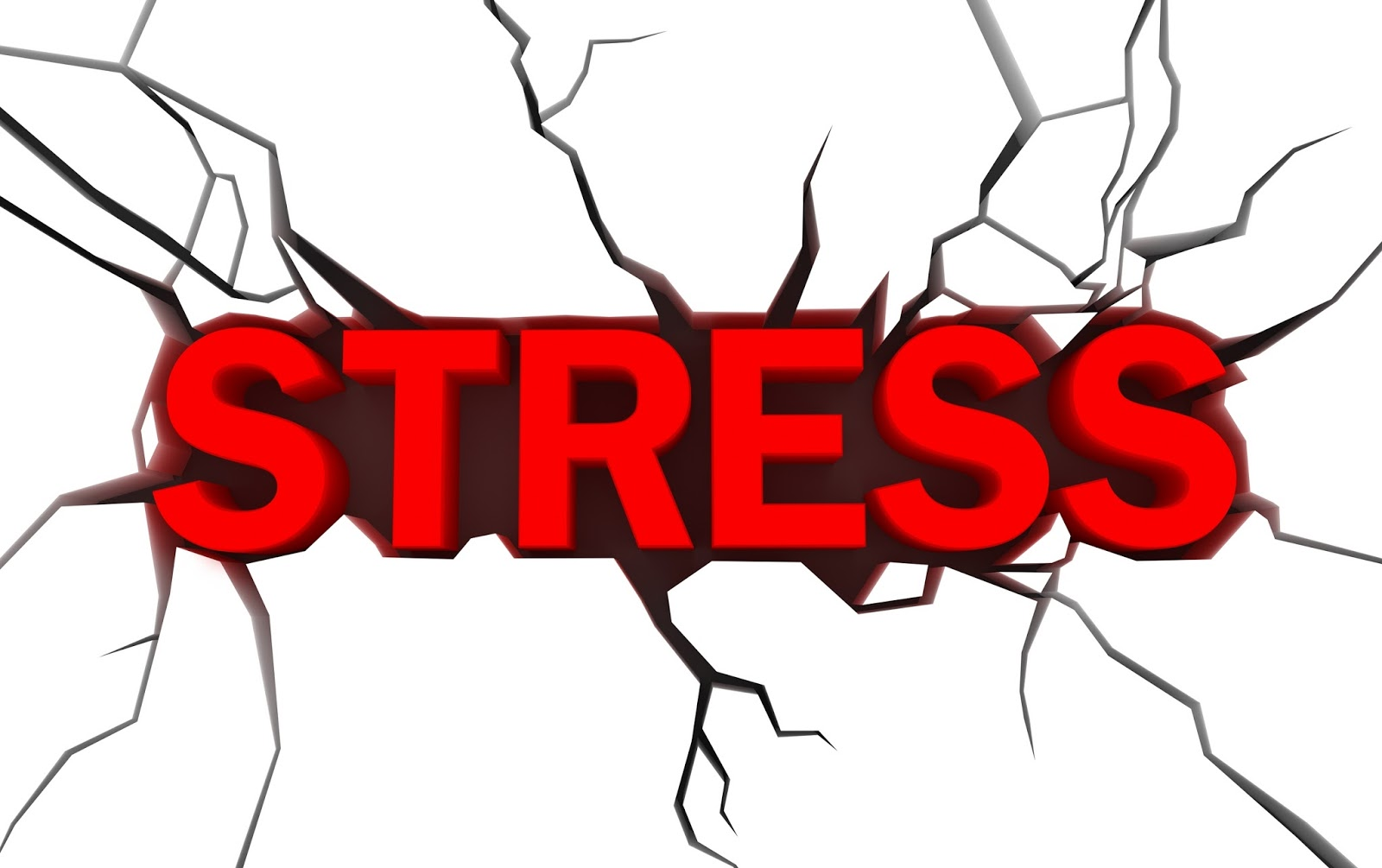 The Day I Realised My Stress Was Killing My Kids