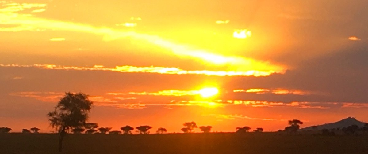Photo Credit: Apexphotos/Getty Images