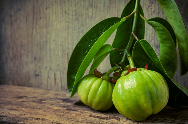 Garcinia Cambogia Benefits And Supplement Facts 2018