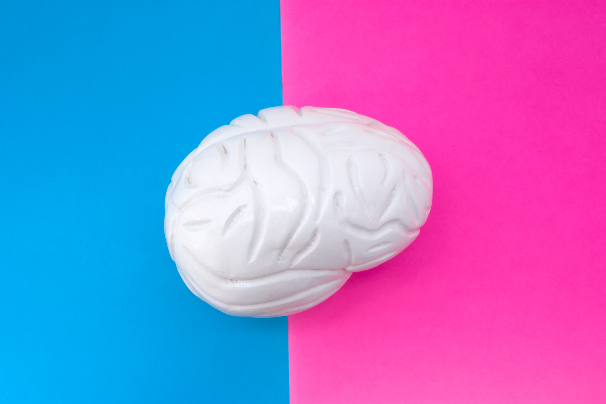 Anatomical shape of brain is located in middle of frame, divided by half by pink and blue background. Concept of gender features of brain or mental health in men and women, functions and structure