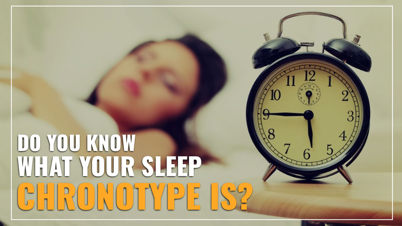 Do you know what your sleep chronotype is? lion bear dolphin wolf