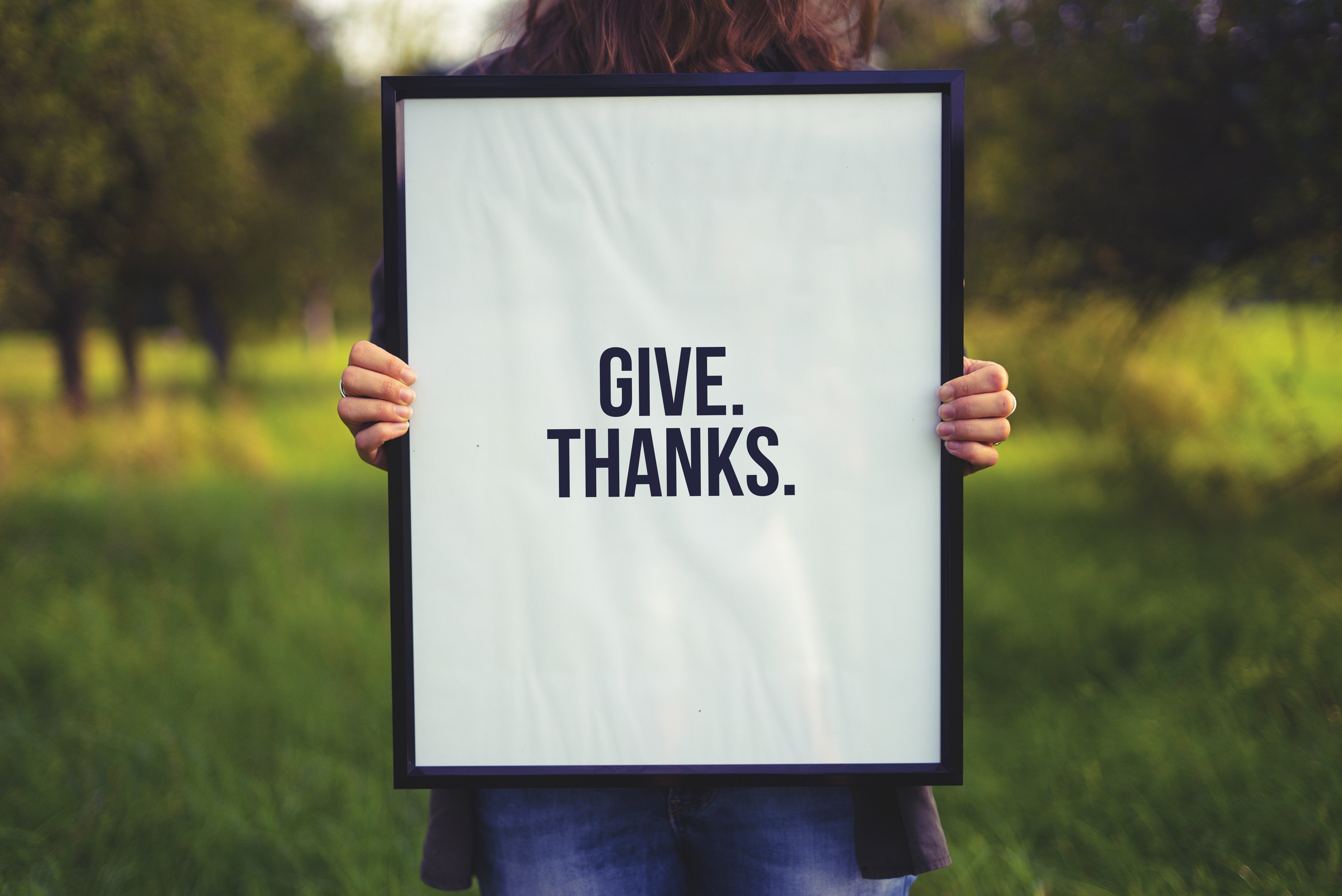 a mindful thanksgiving