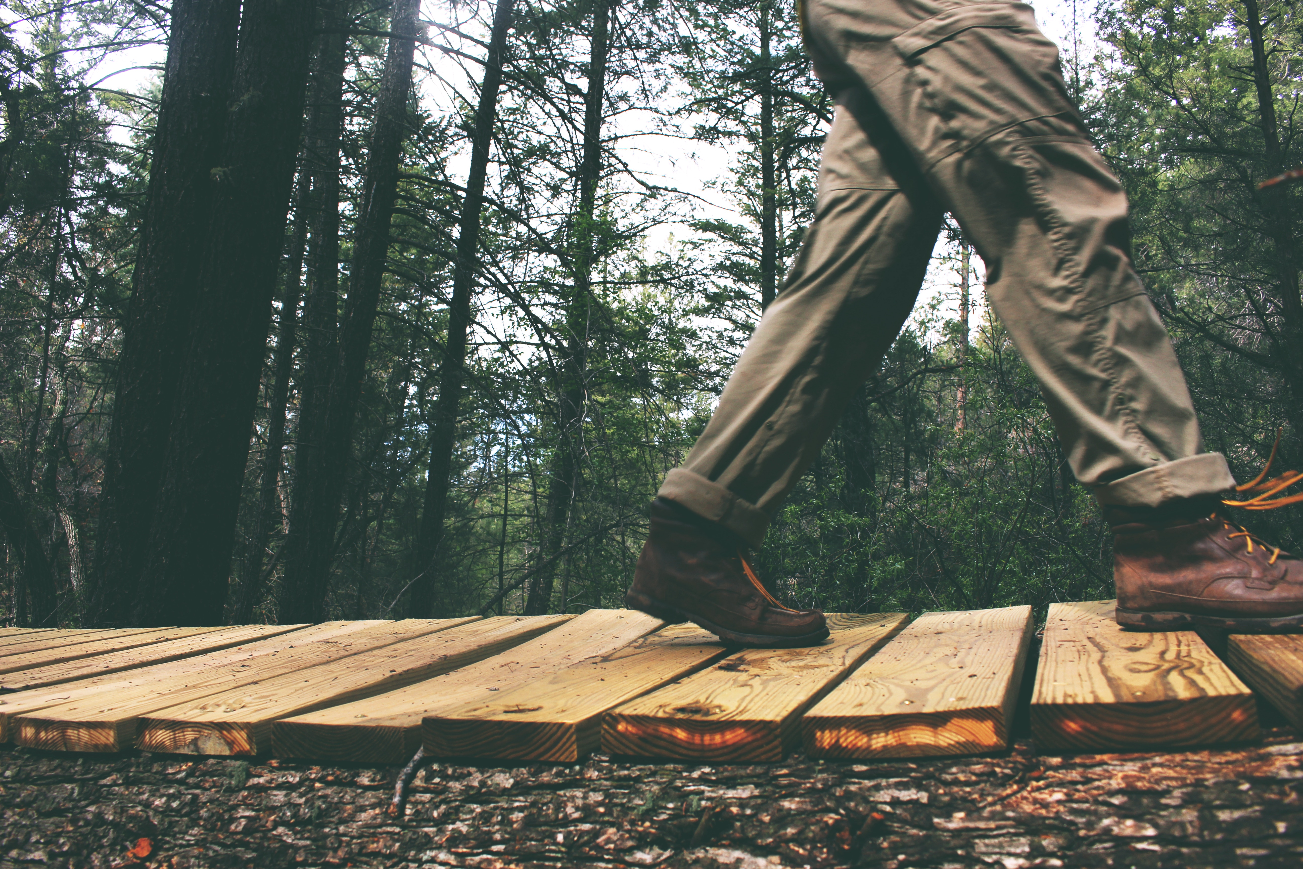 A walk in the woods can improve mental health. Photo by Lacey Raper on Unsplash