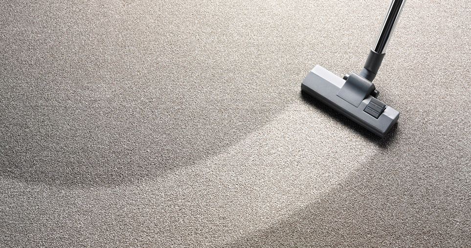 Choose the Professional Carpet Cleaning Services