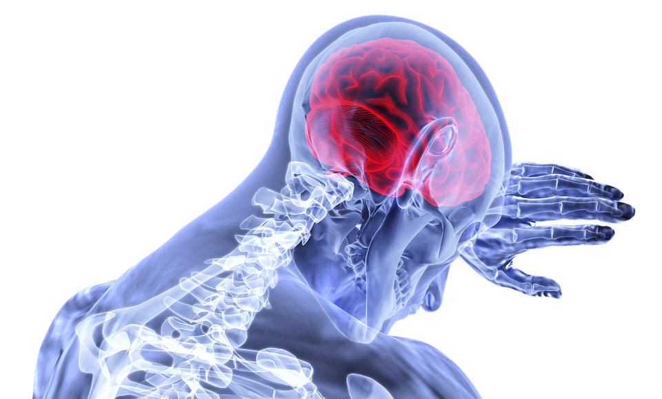 brain, inflammation, medical, health care