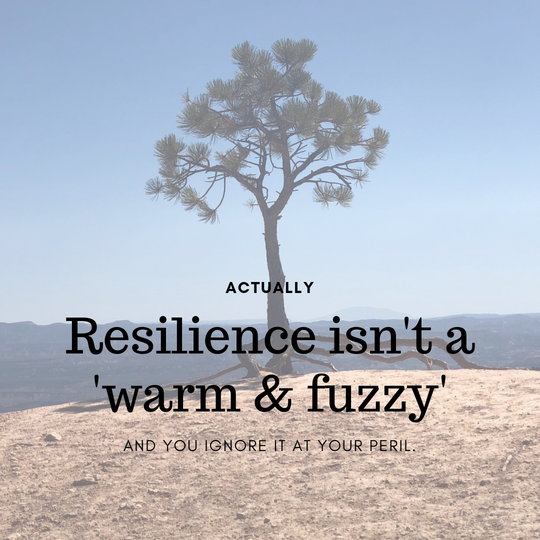 Resilience 2 Keep It Super Simple The Economy of Enough Bronwen Sciortino Mindfulness.jpg