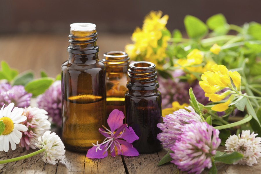What You Need to Know About Flower Essence Healing