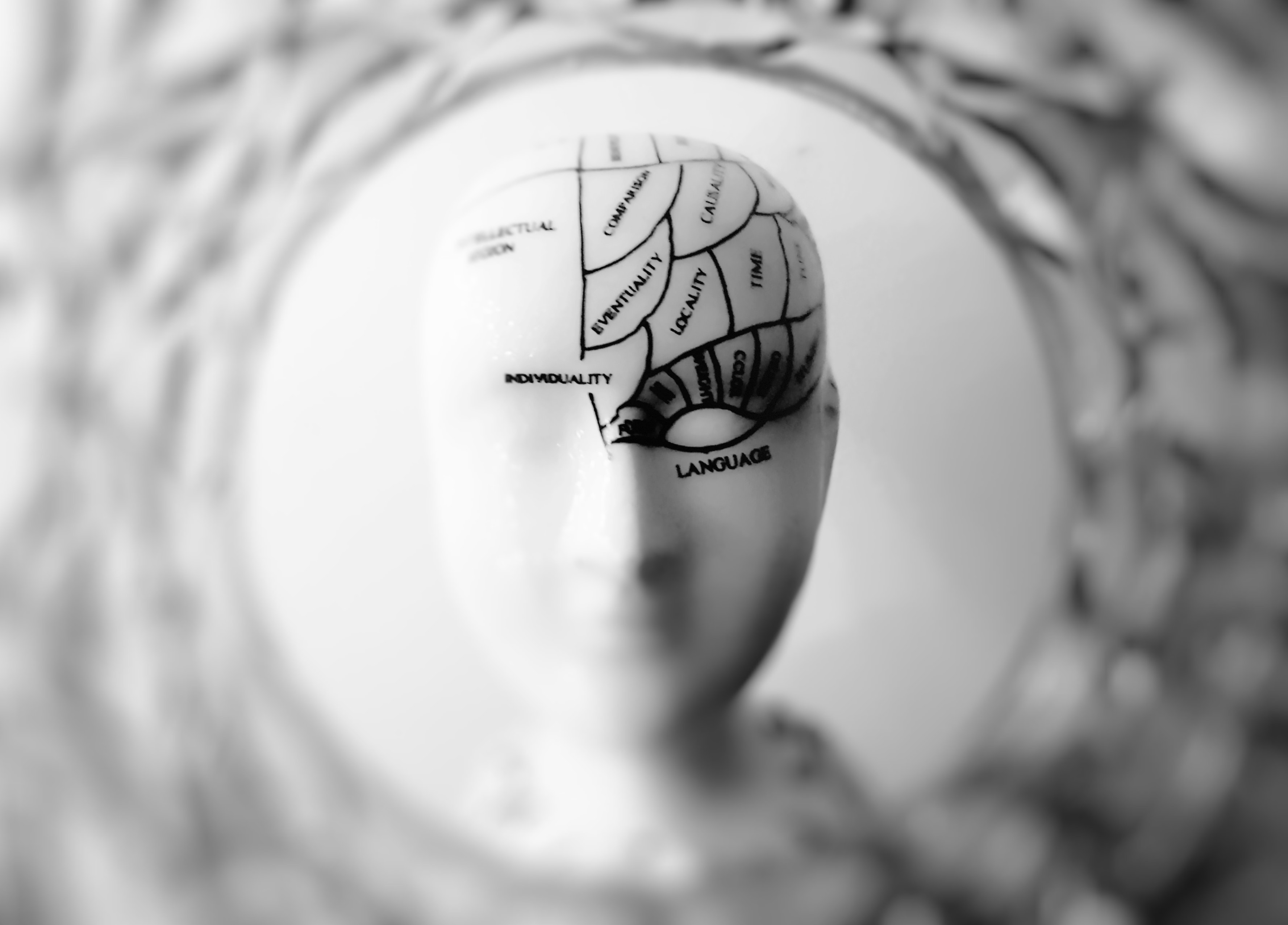 Behavior Management: It's all about the brain