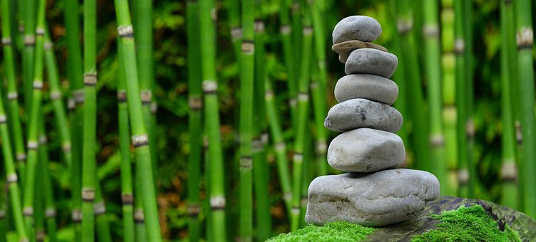 How to Create a Meditation Garden in Your Own Backyard