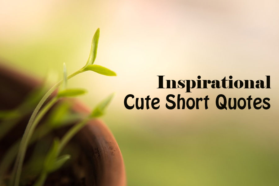 12 Inspirational Cute Short Quotes