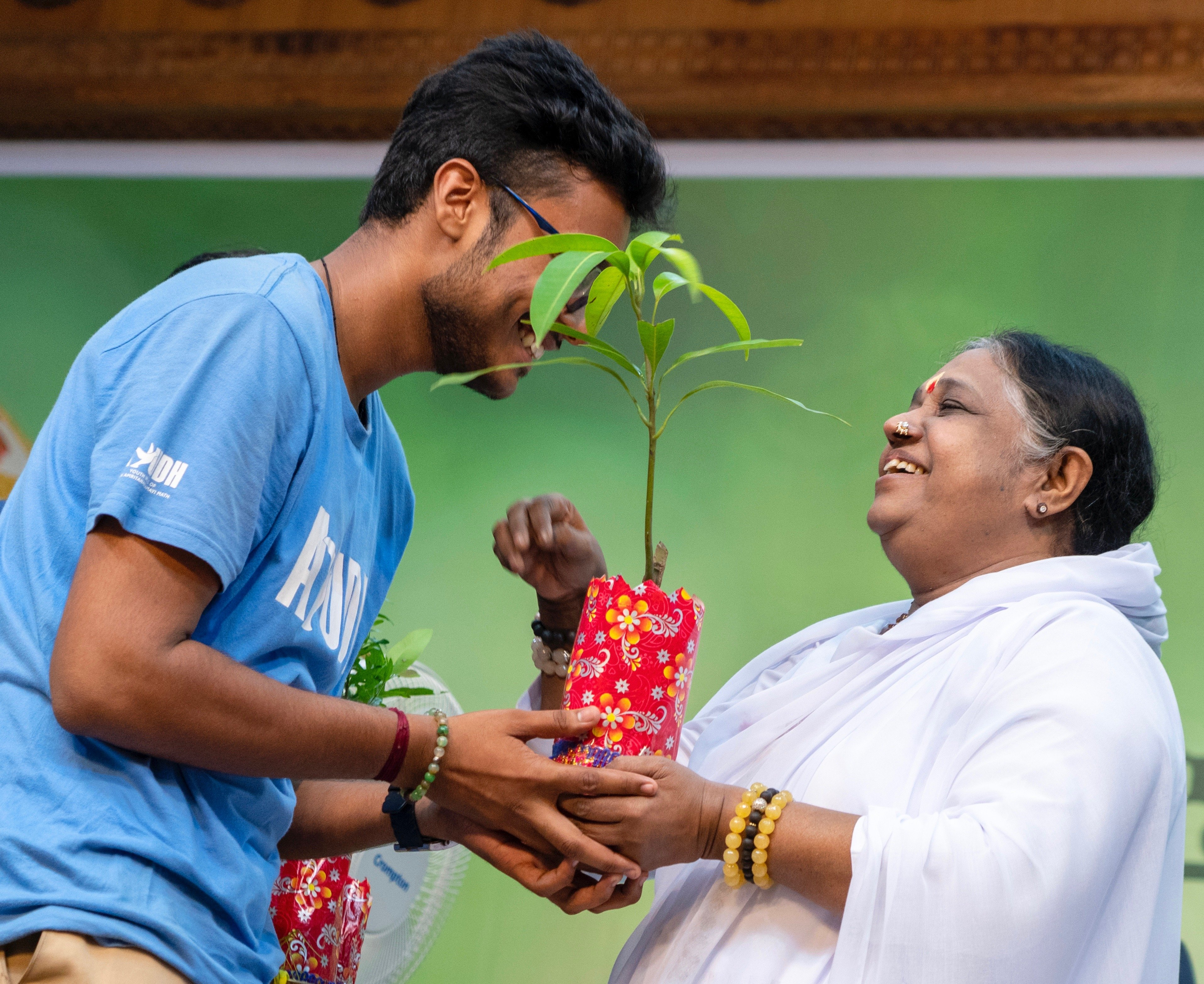 Photo of Amma distributing sapling to youth