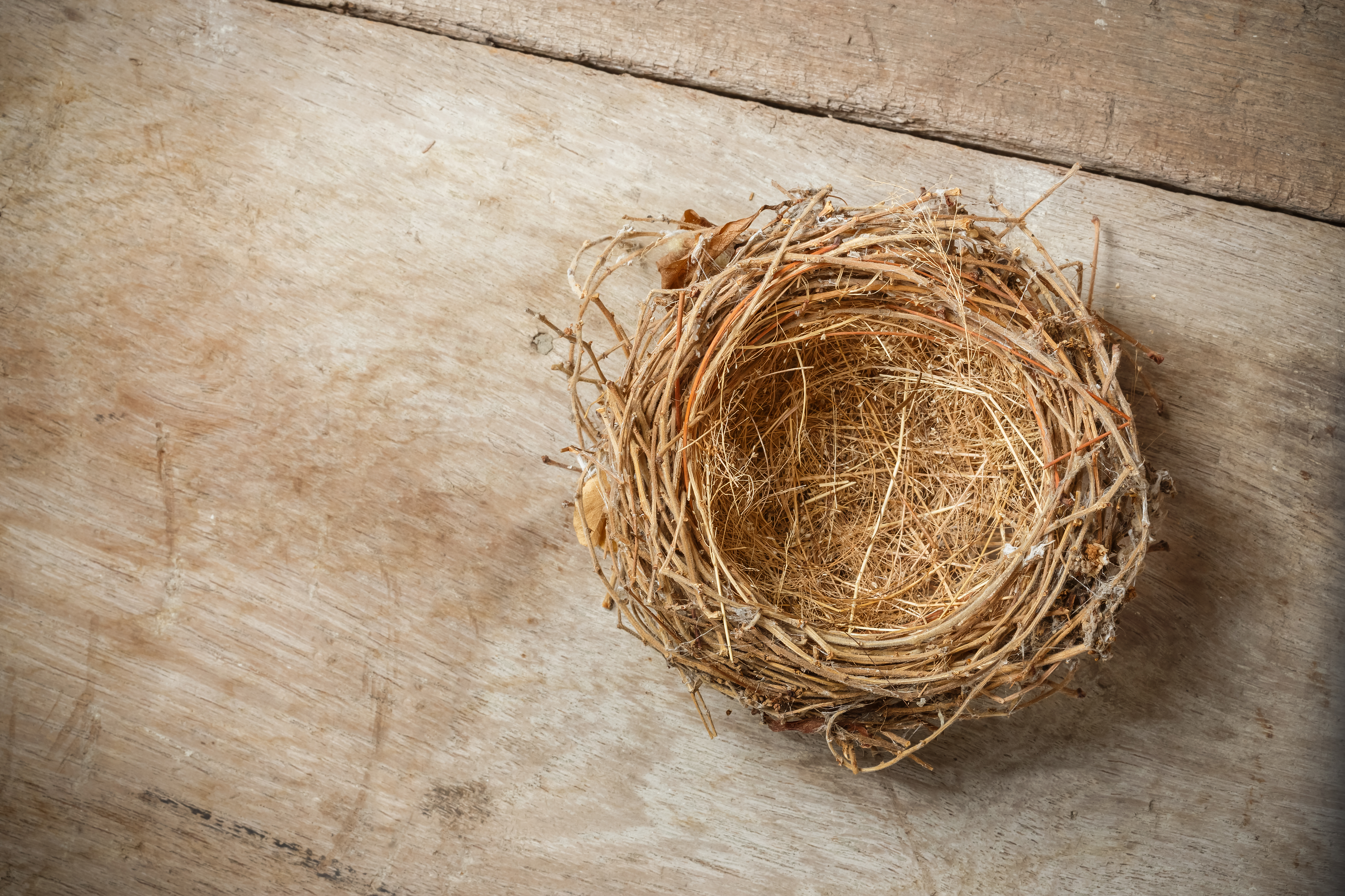 How to Adjust to Being an Empty Nester for the First Time