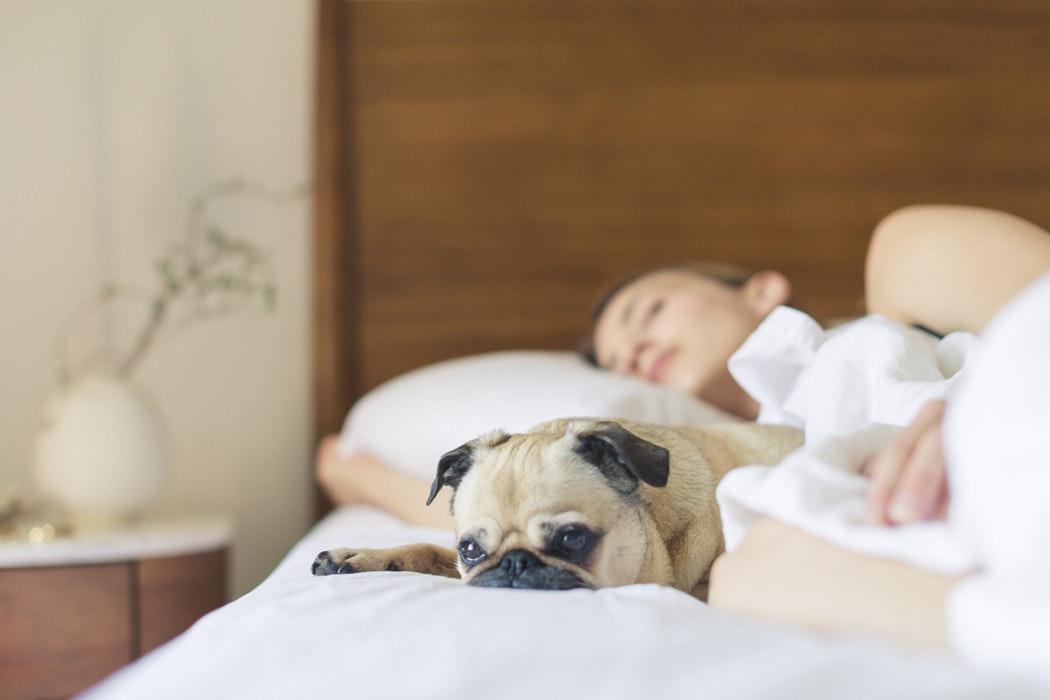 Sleep Tight: How Pregnant Mothers Can Snooze Better
