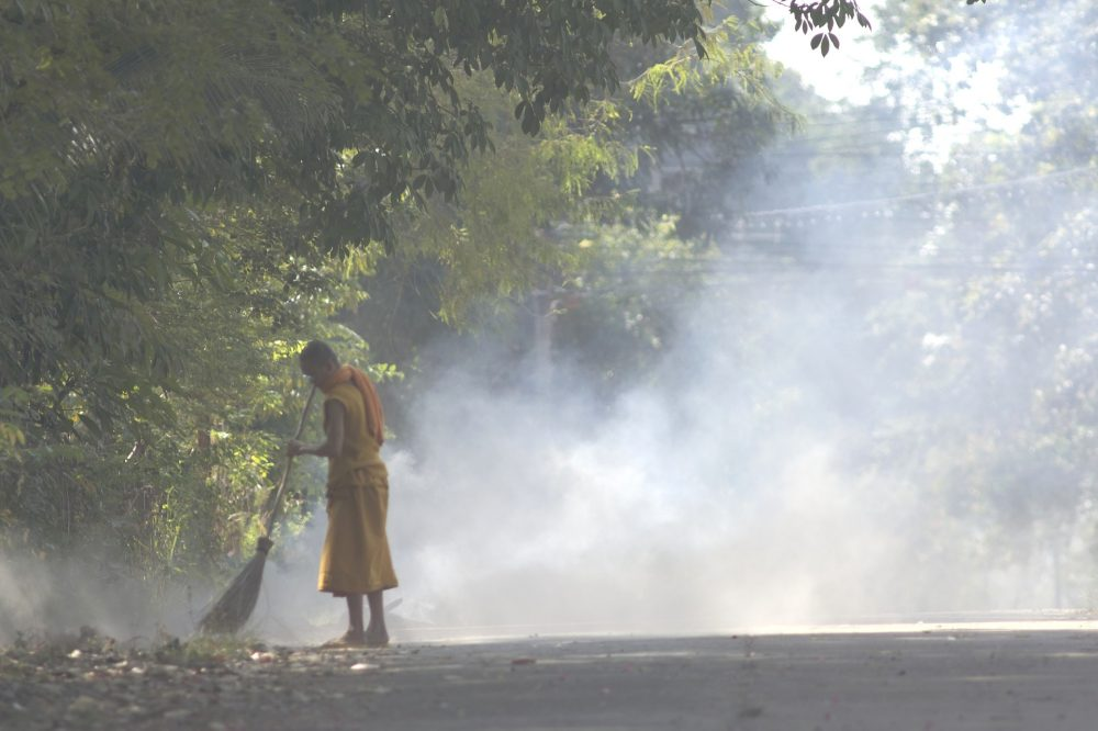 Monk sweeping dry leaves on side of the street