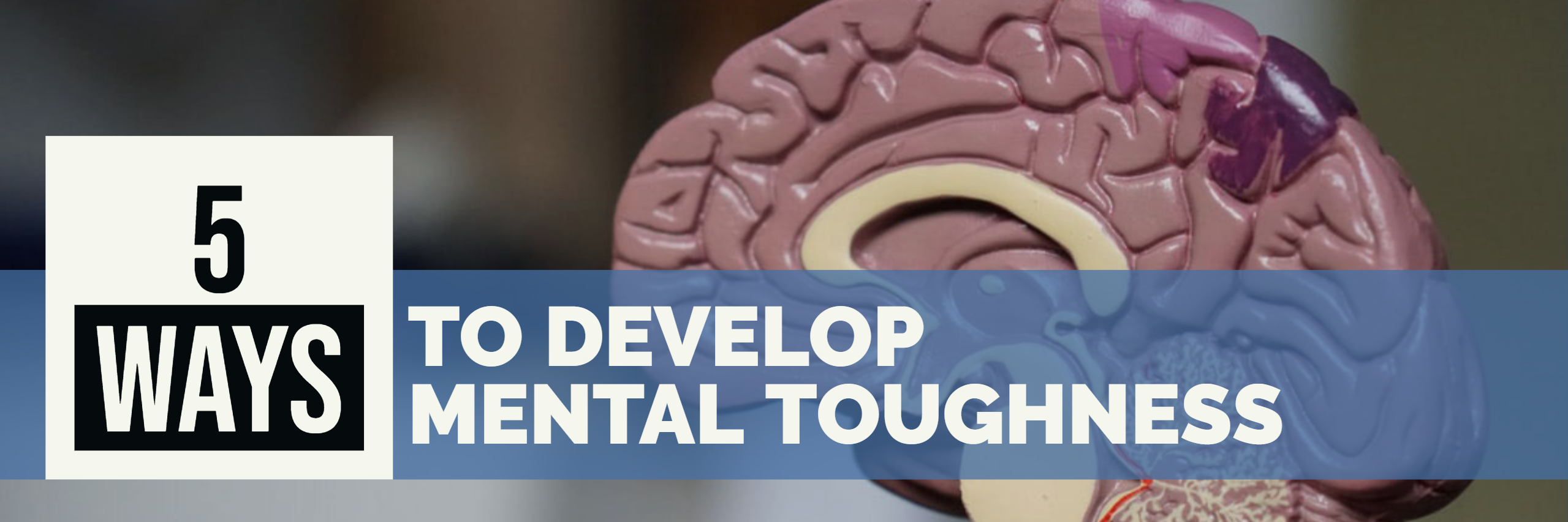5 Tips on How To Develope Mental Toughness Paul Argueta Corporate Consulting Increase Sales Coach Mentor Mastermind Sales Program Digital Marketer SEO Internet Marketing