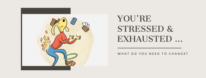 Bronwen Sciortino How to Beat the Stress of the Silly Season