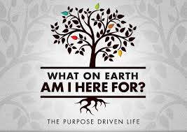 http://purposedriven.com