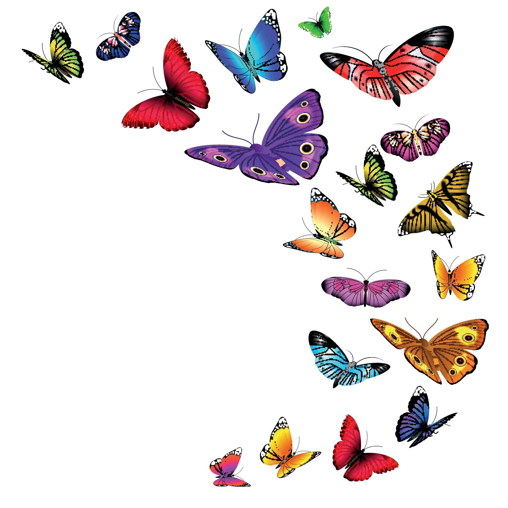 The Butterfly Effect in action