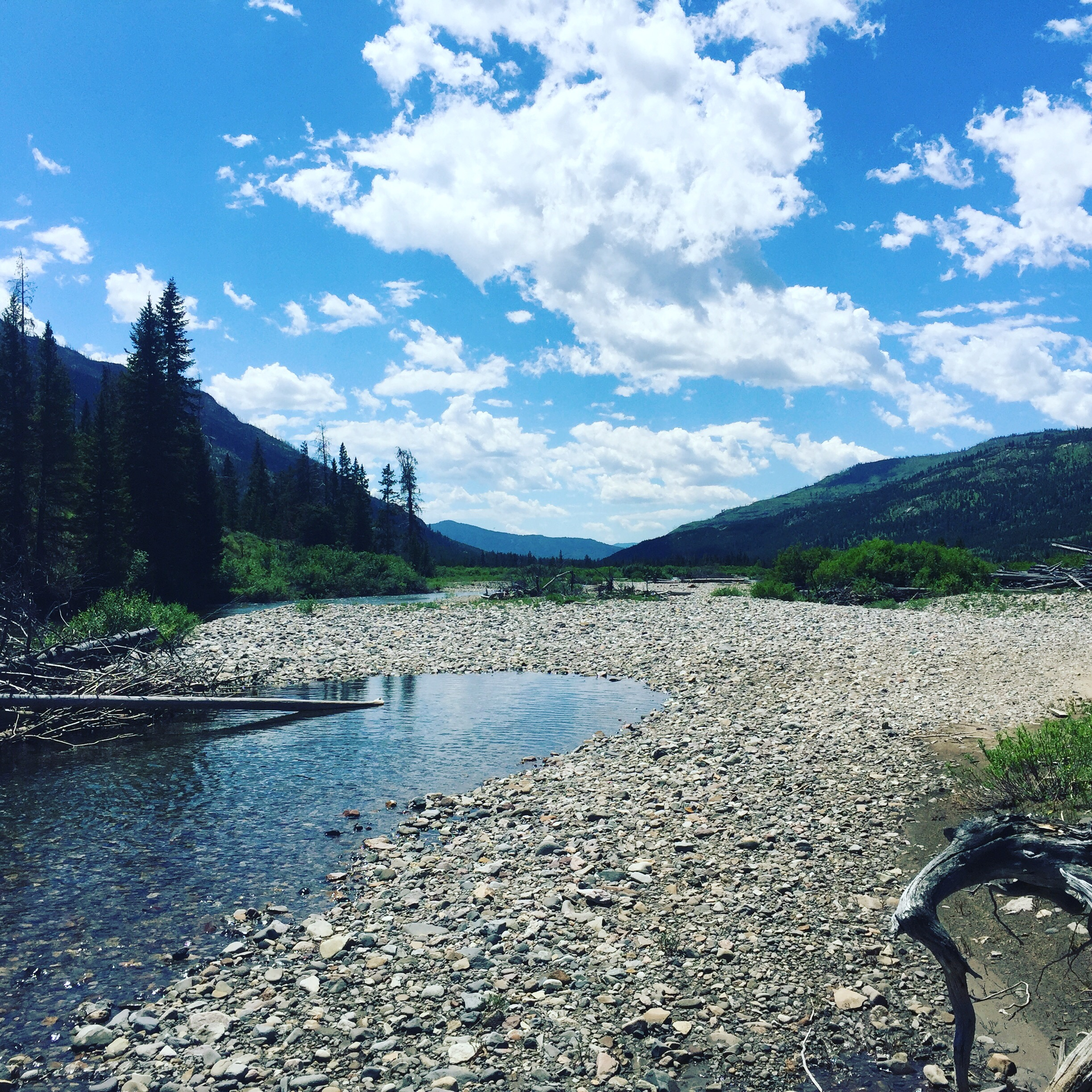 Photo credit: Heather White. Slough Creek  outside of Yellowstone National Park.
