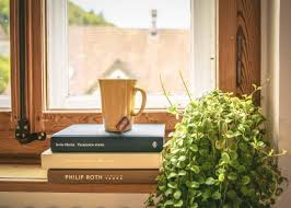 picture looking out window with plant, books, coffee mug