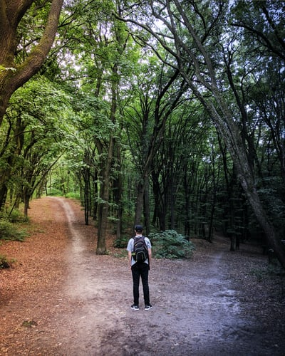 Unsplash: Man standing in the middle of woods