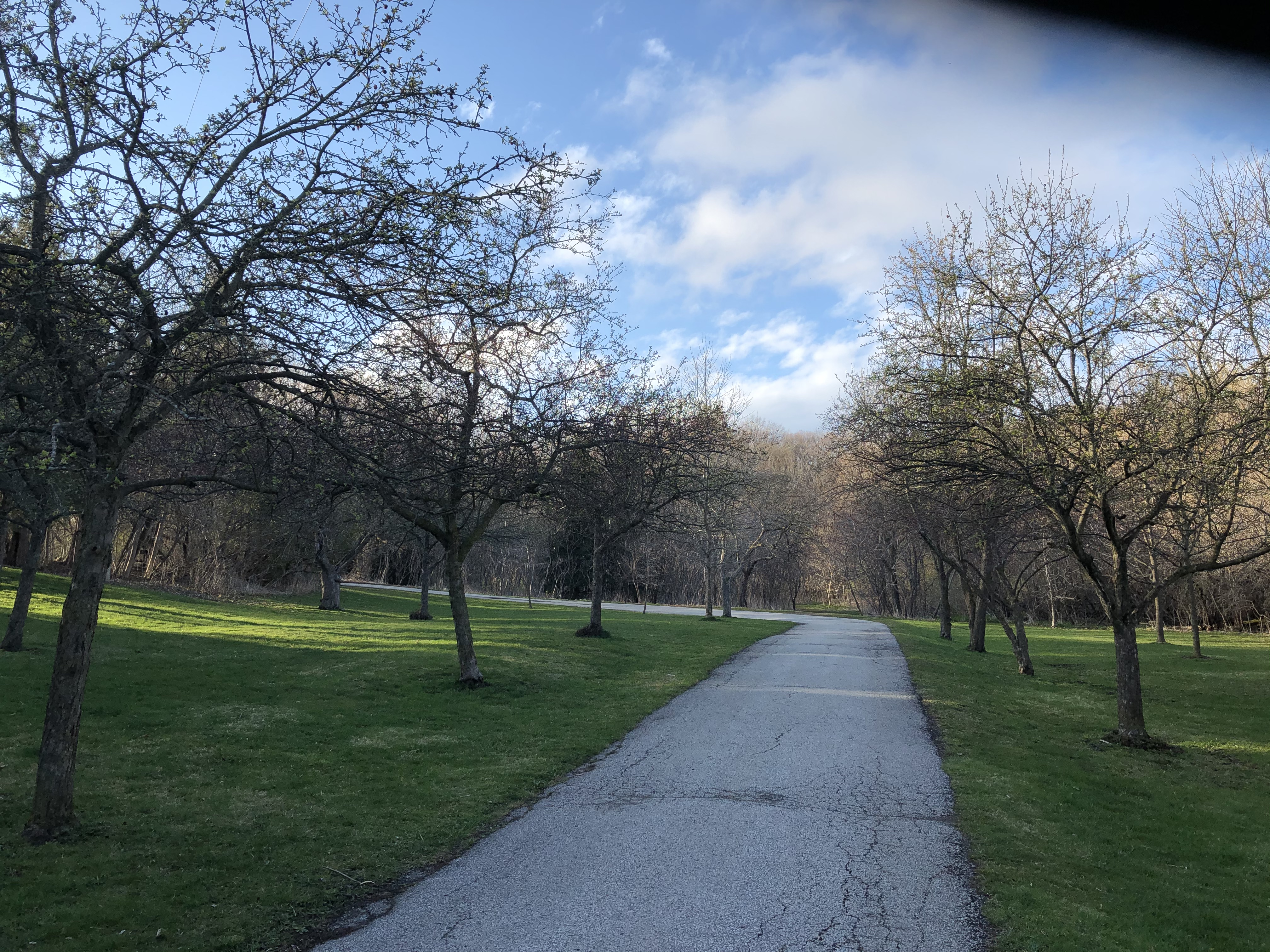 Walking trail in Toronto's Earl Bales Park - April, 2020.