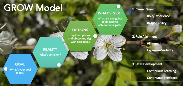 GROW model for career growth conversation