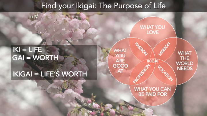 Ikigai - Life's worth