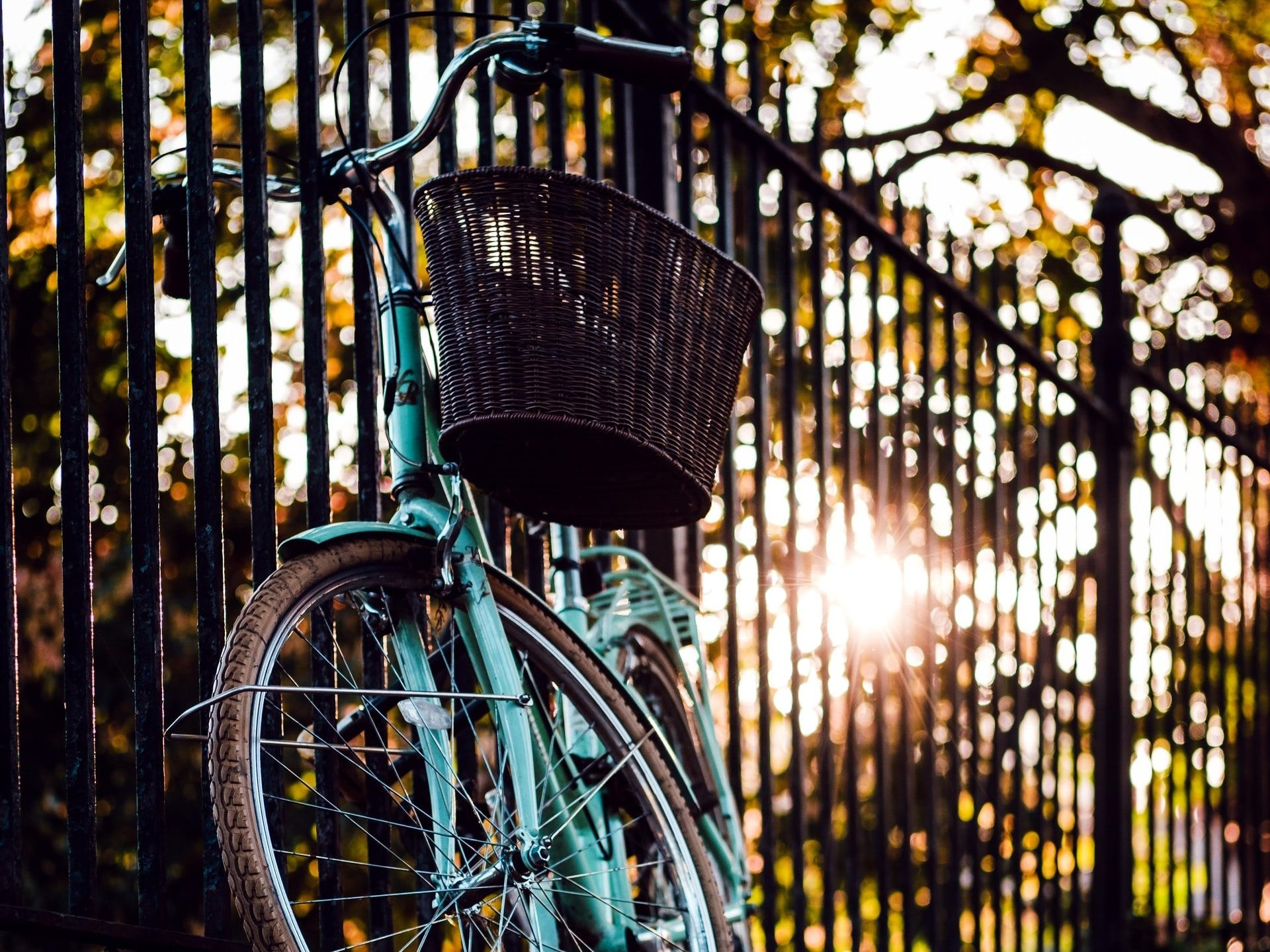 Bicycle by fence