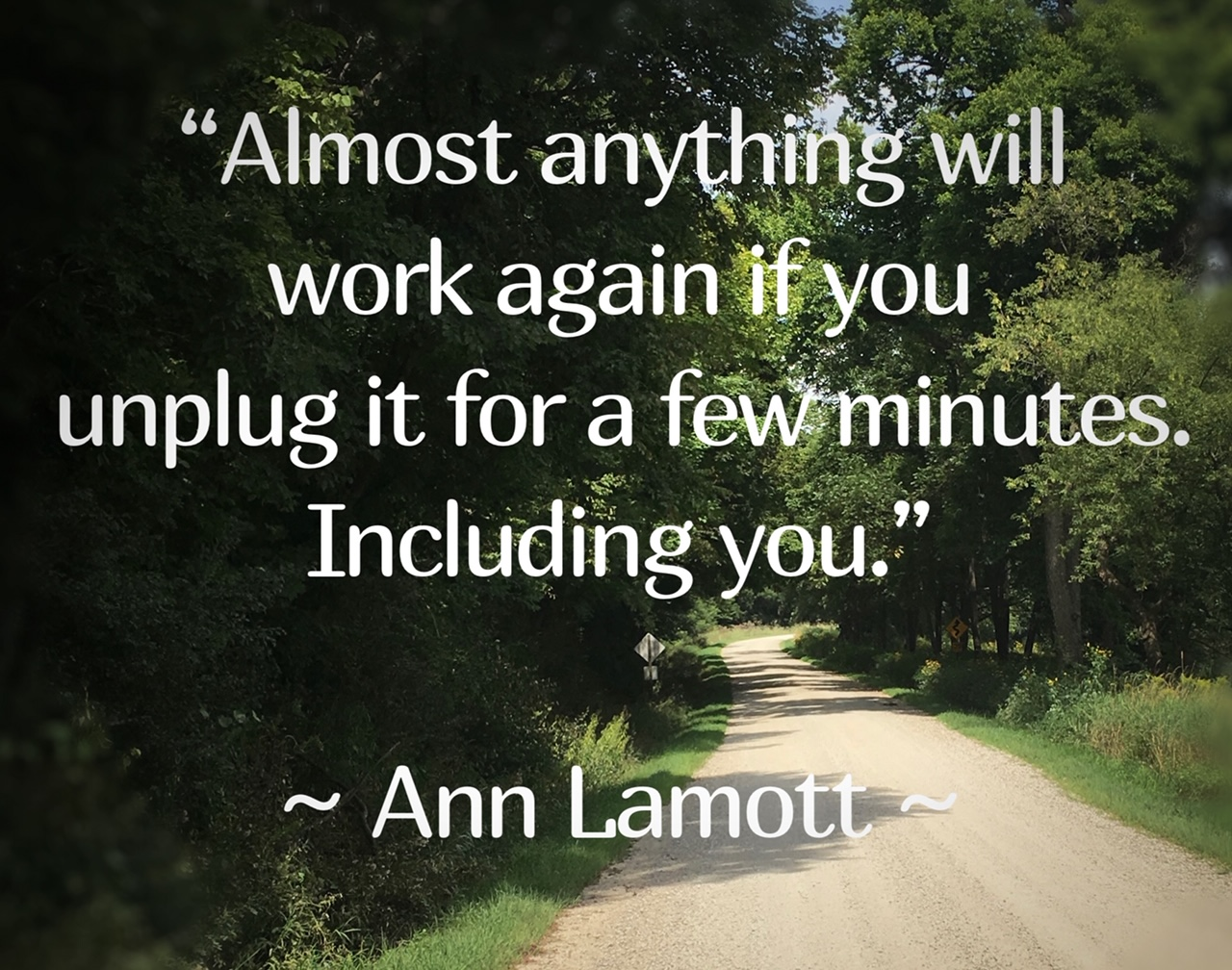 Anne Lamott is an American novelist and non-fiction writer.  She is also a progressive political activist, public speaker, and writing teacher.