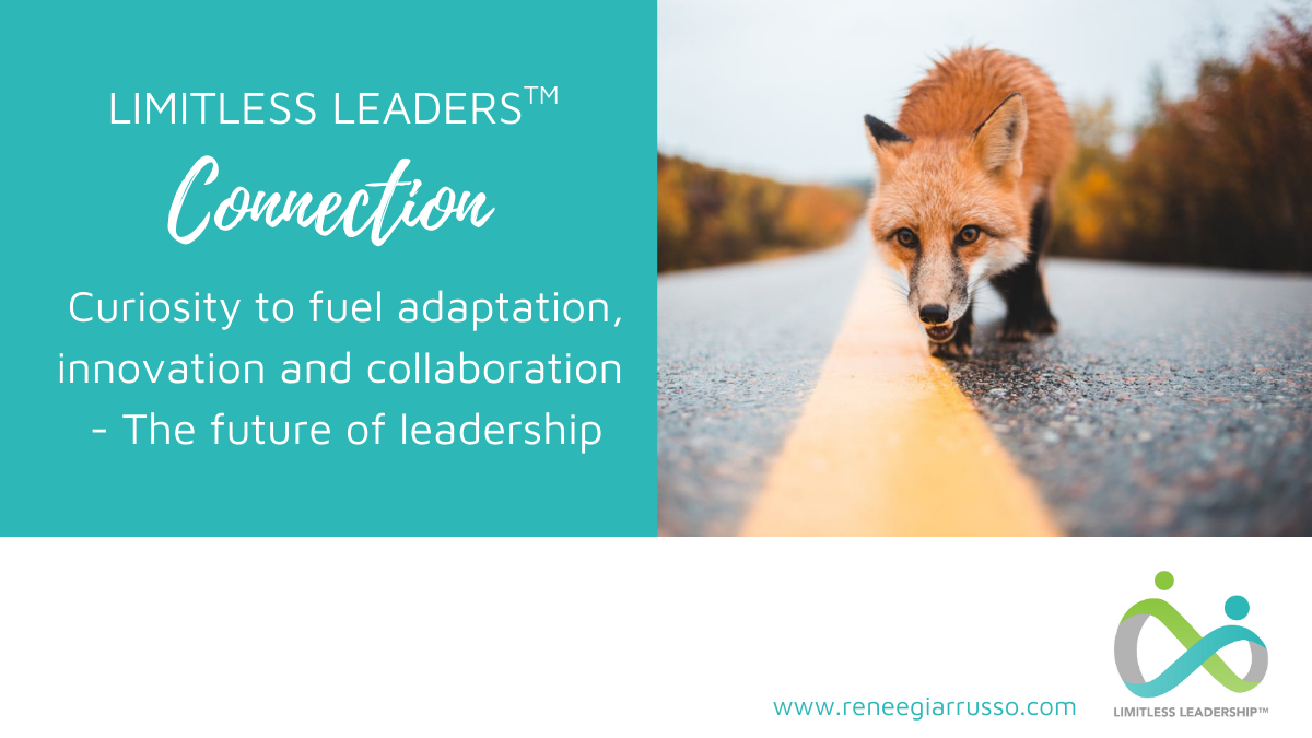 Curiosity Month Connection – Curiosity to fuel adaptation, innovation and collaboration – The future of leadership
