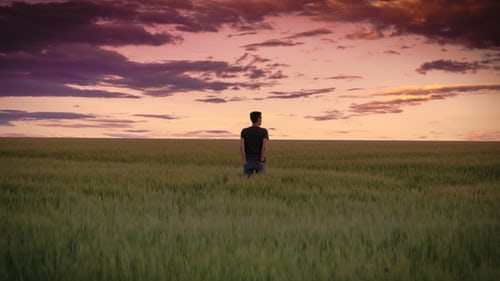 A man in the middle of green field looking at the horizon