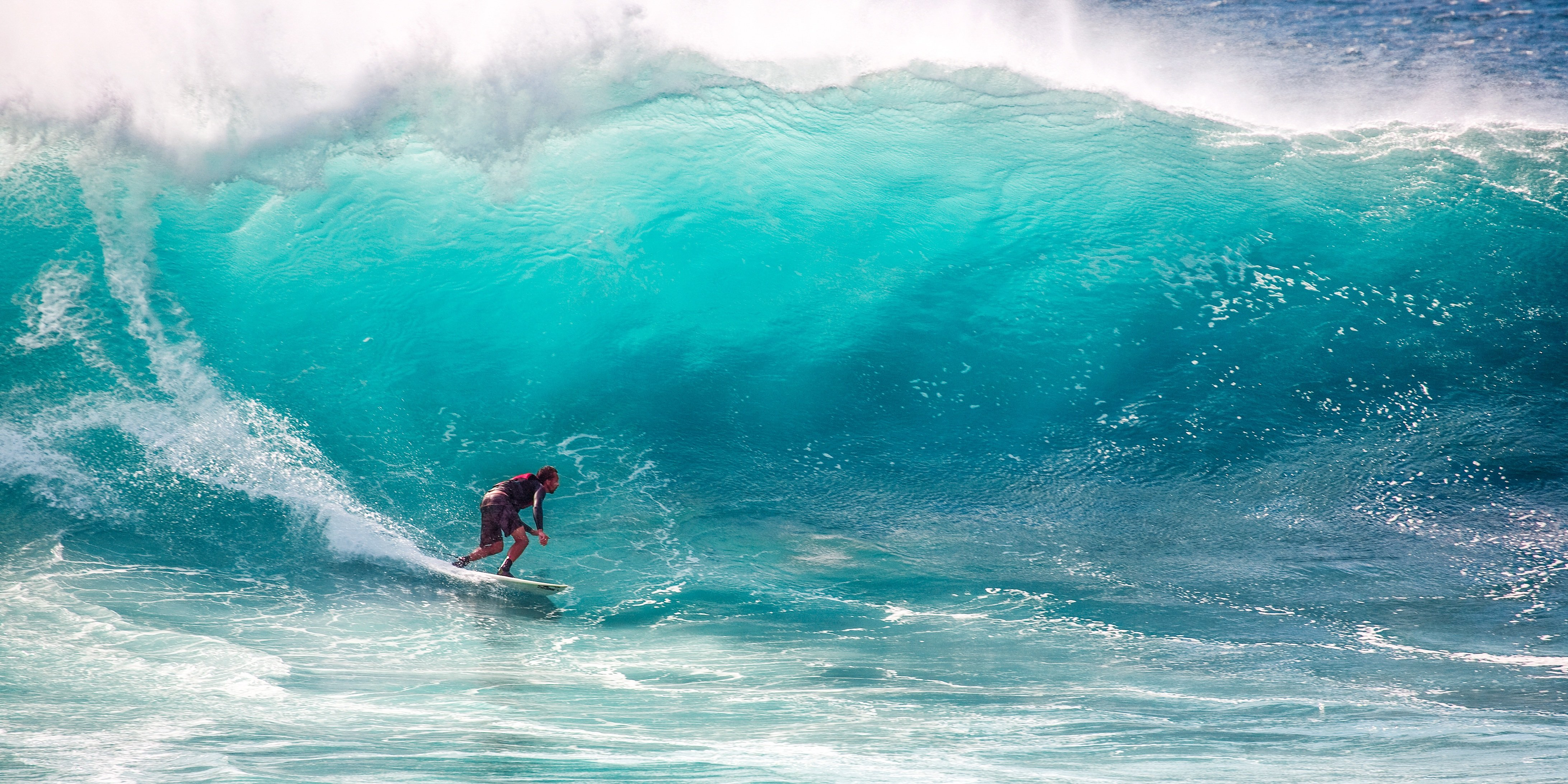 surf-the-covid-wave