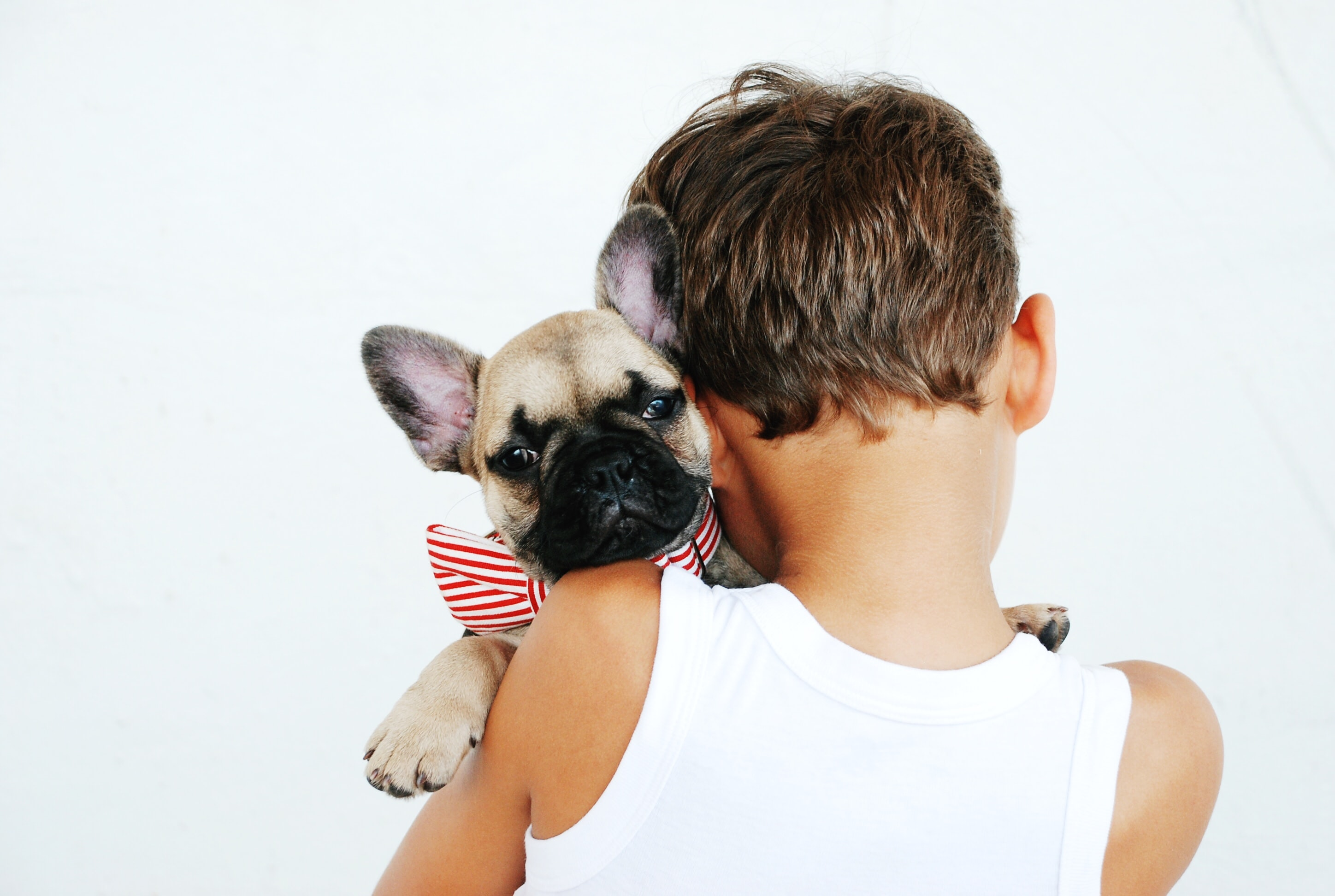 What to Say to Someone Grieving the Loss of a Pet (and Things Not to Say)