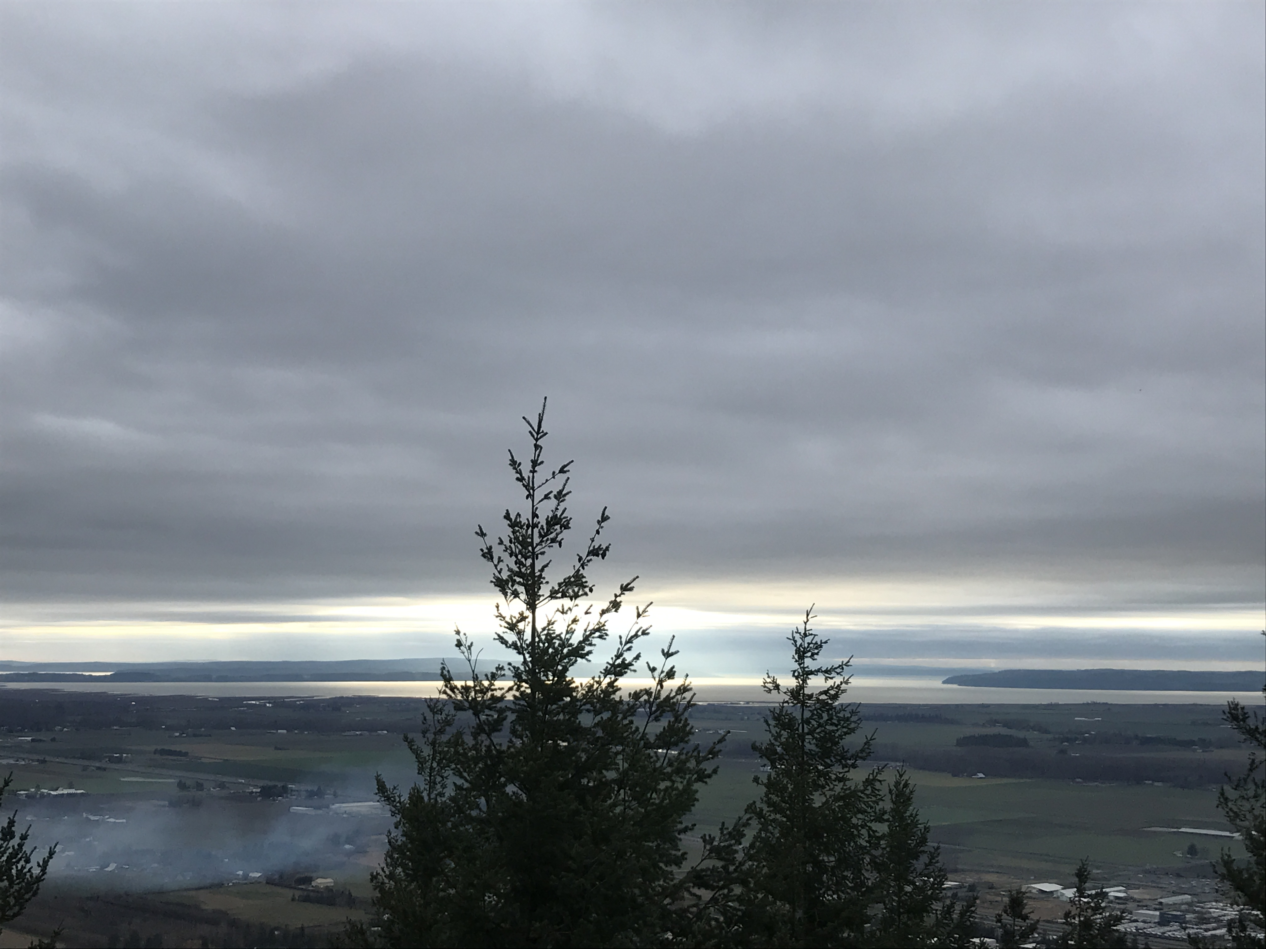 Trees and a view of the Skagit Valley from the top of Little Mountain