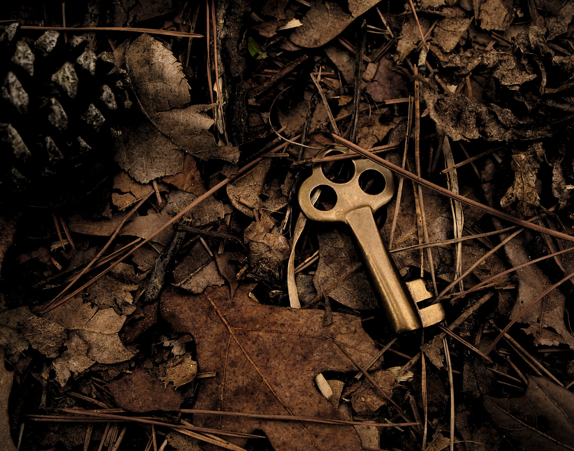A brass key laying on dried leaves and twigs