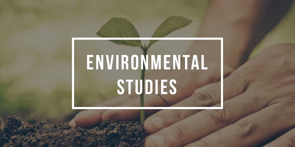 Sustainability Degree