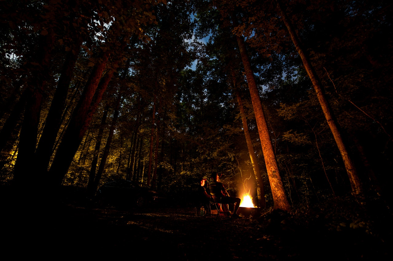 Man sitting in front of a campfire in the middle of a forest