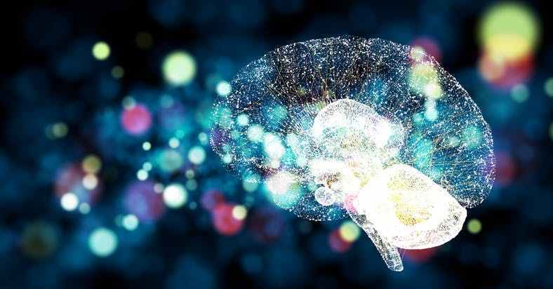 What is Neuroplasticity and How is it Related to Mental Health?
