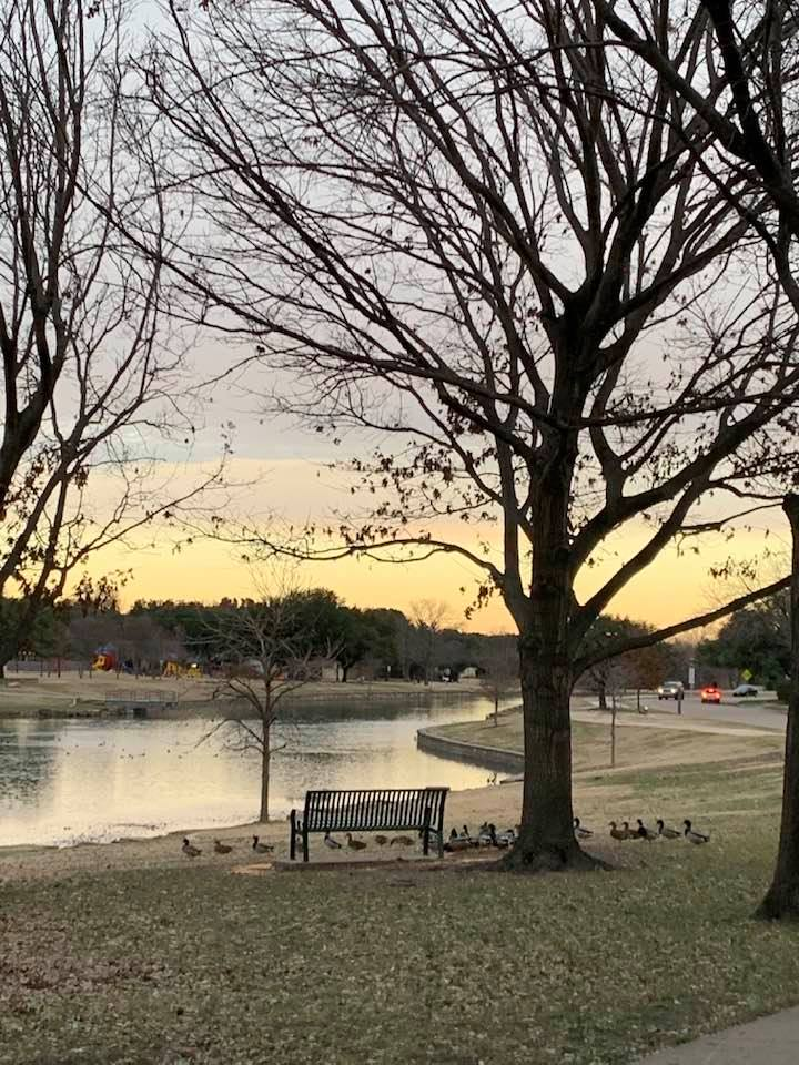 Sunset in the park. Plano, Texas