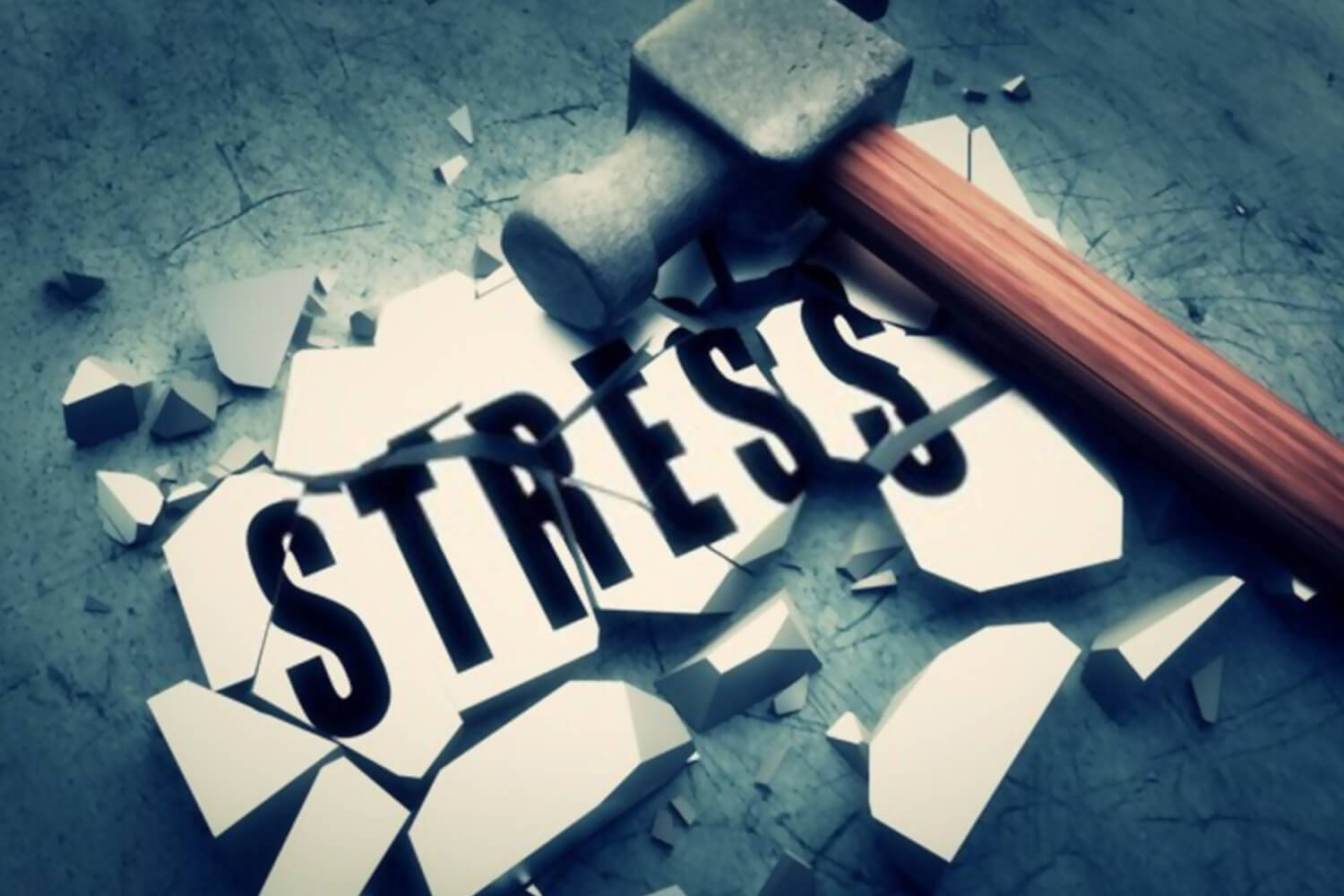 conquer the stress