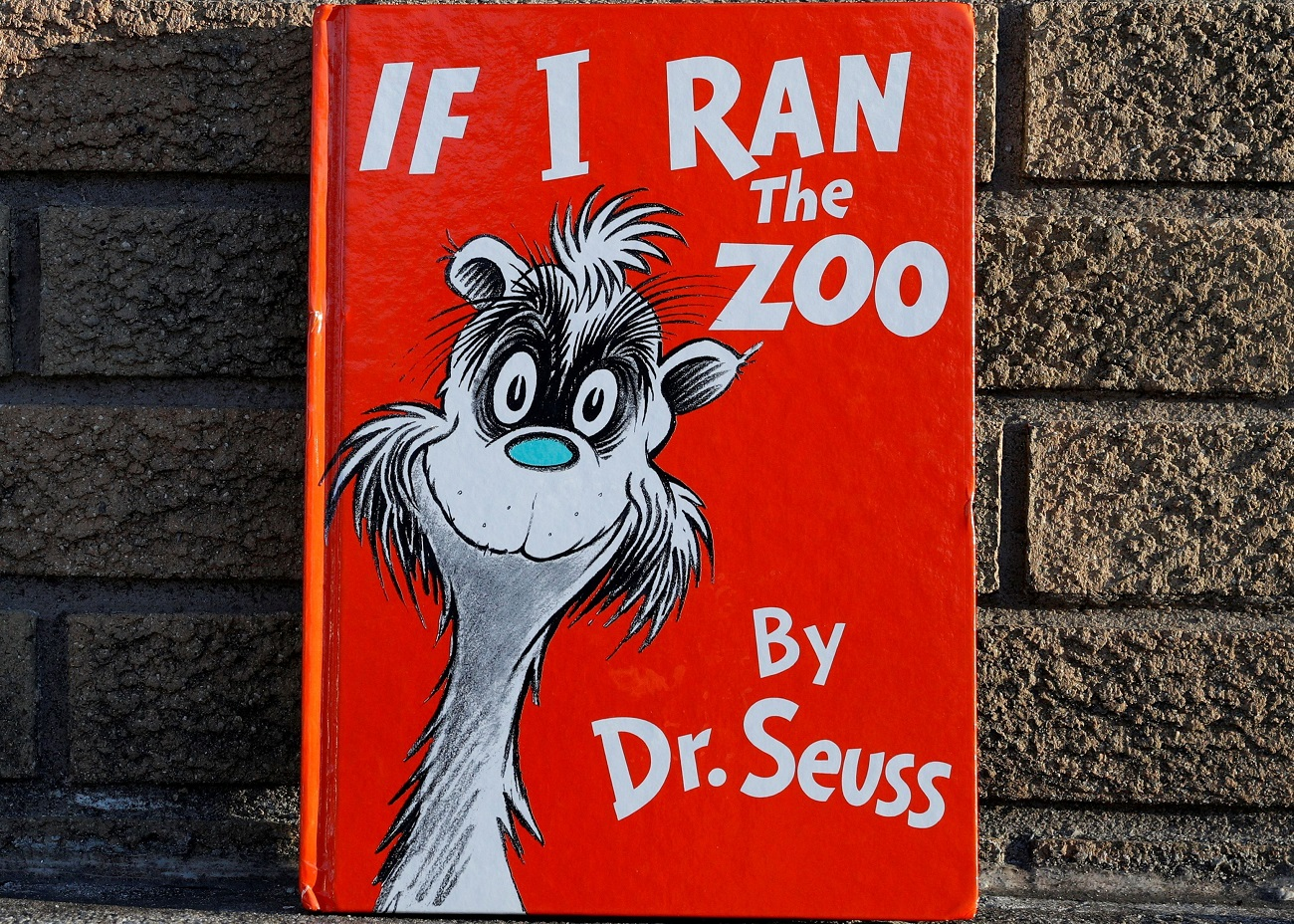 "A copy of the children's book ""If I Ran The Zoo"" by author Dr. Seuss, which the publisher said will no longer be published, is seen in this photo illustration taken in Brooklyn, New York, U.S., March 2, 2021. REUTERS/Brendan McDermid/Illustration REFILE - UPDATING BYLINE"