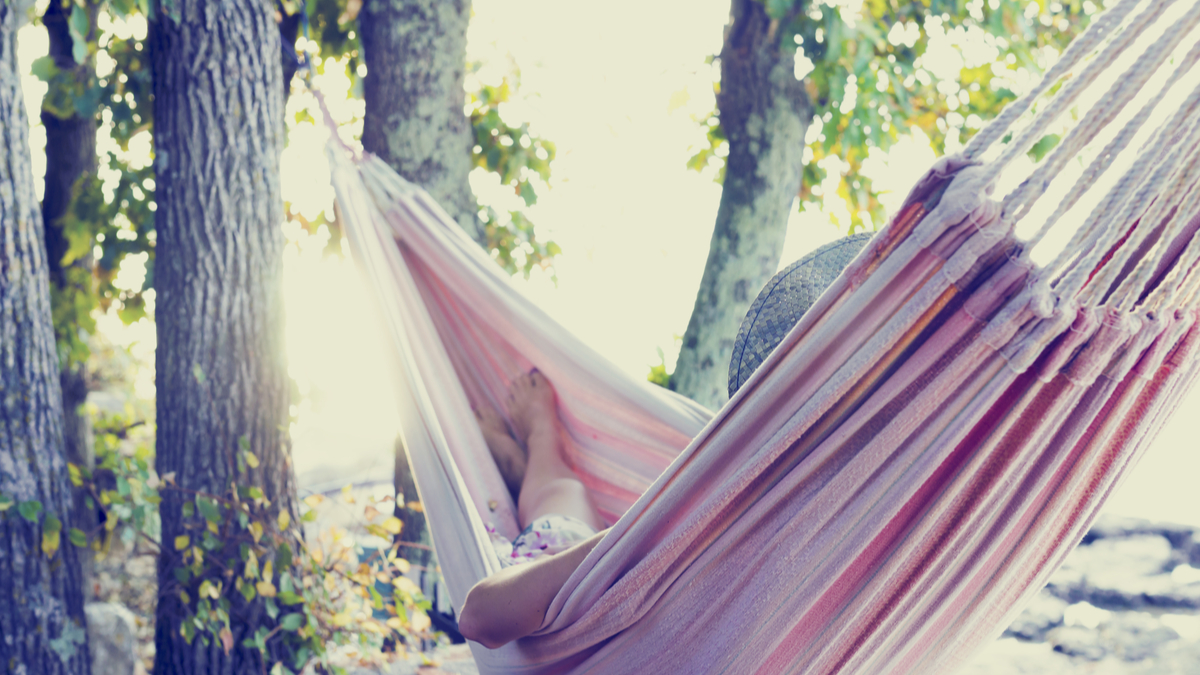 Resting in a hammock in the trees