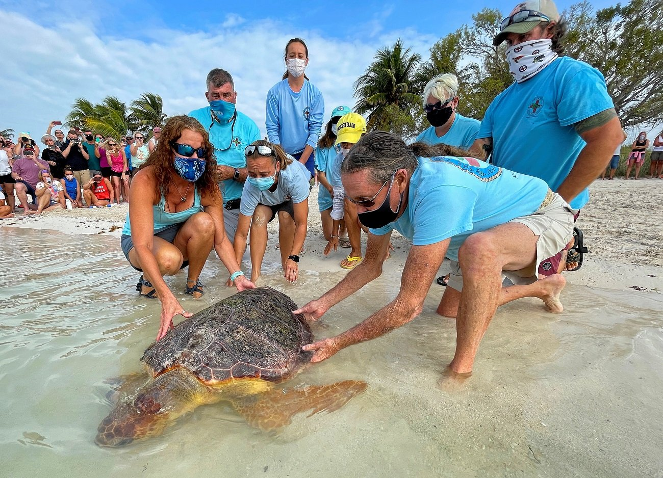 """Bette Zirkelbach and Richie Moretti, Florida Keys-based Turtle Hospital's manager and founder, respectively, release """"Sparb"""", a sub-adult loggerhead sea turtle, at Sombrero Beach in Marathon, Florida, U.S., April 22, 2021. Andy Newman/Florida Keys News Bureau/Handout via REUTERS"""