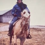 Horses Teach Us How to Connect on a Human Level – Scarlett Lewis, Thrive Global