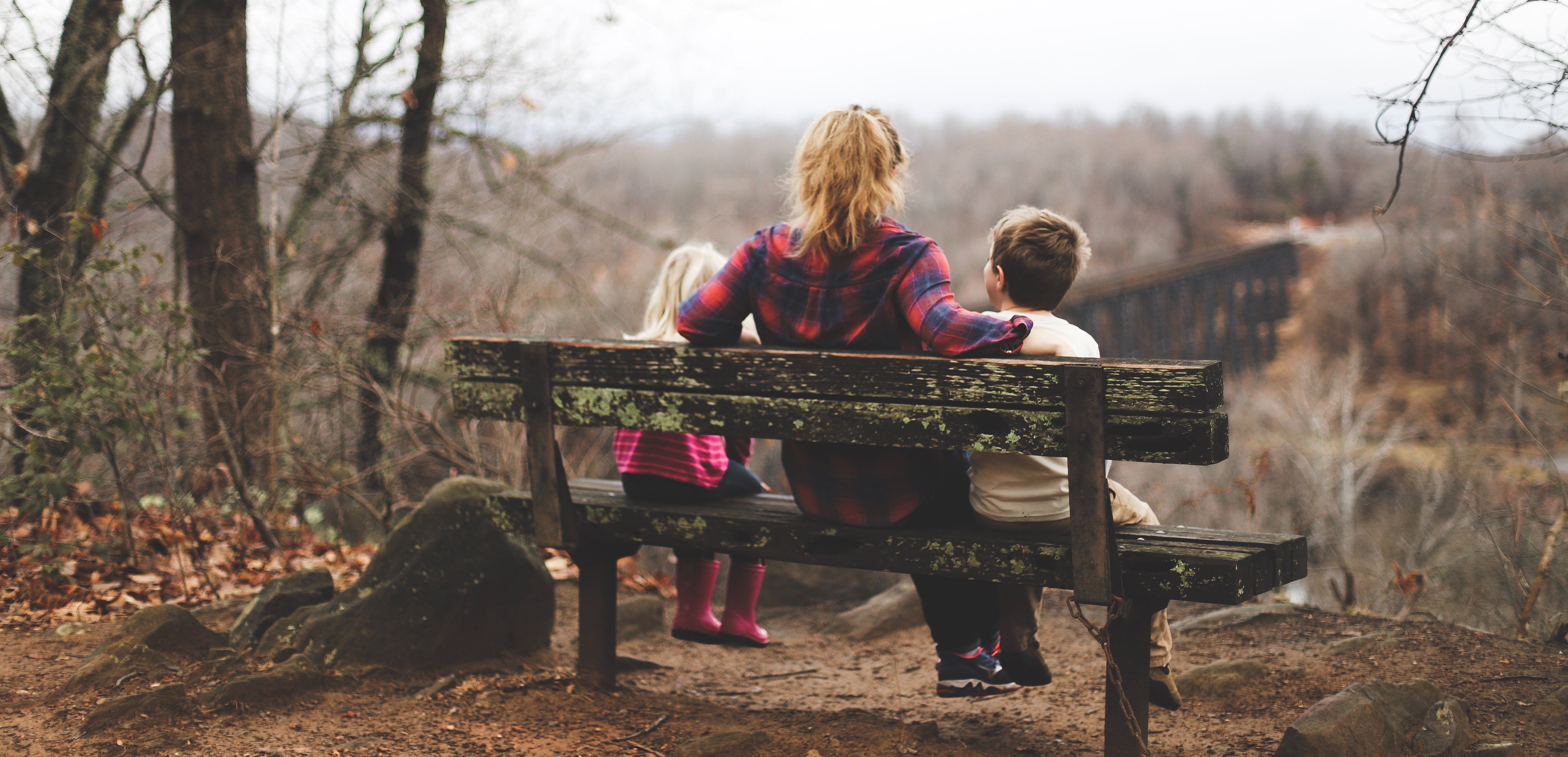 a picture of a mom and her two kids sitting on a bench looking out at a landscape