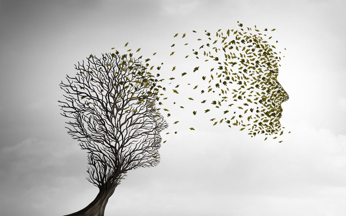 Illustration: person's face as a tree that has lost it's leaves - the leaves float off in the wind.