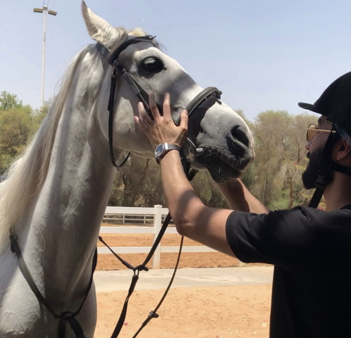 MBM1official image with his white horse